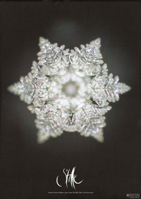 Stilleposter-Kristall-Emoto-Sign-by-Jwala